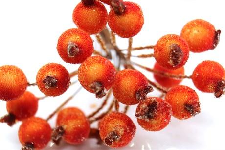 Ягоды рябины оранжевые - фото 16893