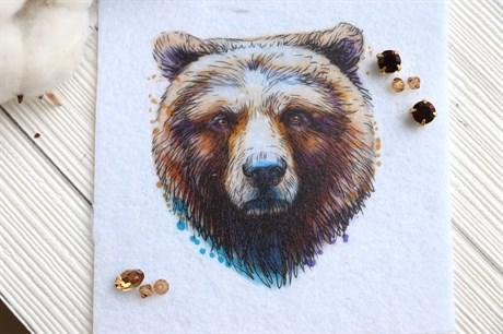 Шаблон Бурого Медведя - фото 19618