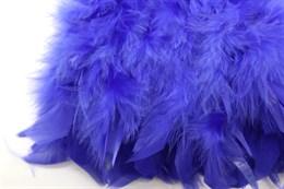 Перо петуха на ленте, Royal Blue
