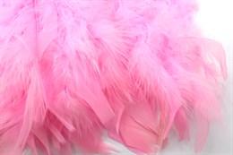 Перо петуха на ленте, Neon pink