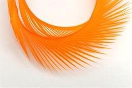 Гусиное перо, Orange