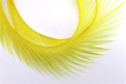 Гусиное перо, Yellow