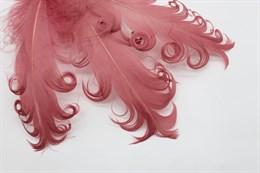 Гусиное перо, Red Stone