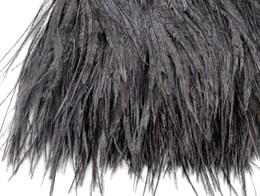 Перо страуса на ленте, Black